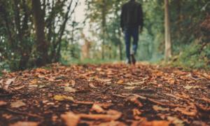 秋の作業着はどんなものを着ればいいの?気温が変化しやすい季節に適した作業服選びのポイント
