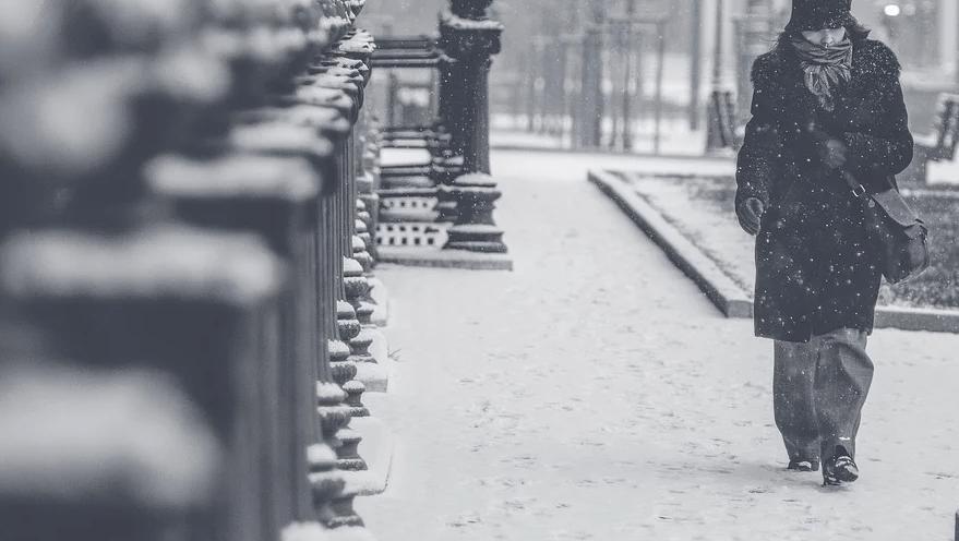 コロナ 冬